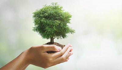Cùng Thế Giới In Ấn sử dụng chất liệu thân thiện với môi trường