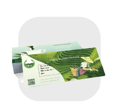 Phiếu bảo hành - Warranty Card