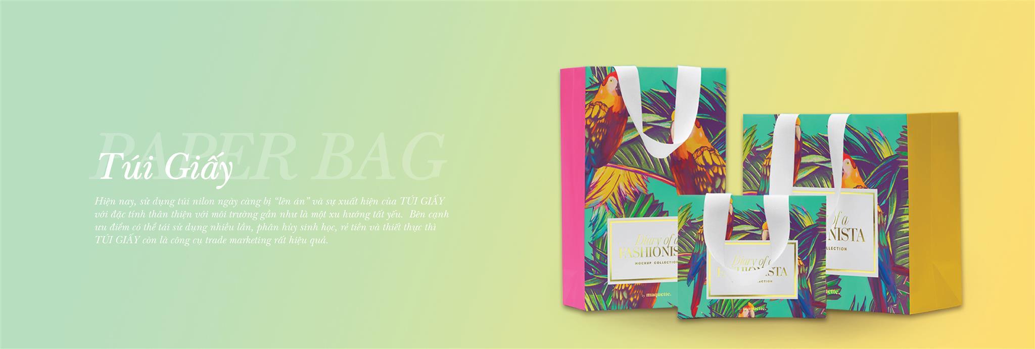 Túi giấy - Paper bags