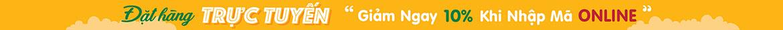 Banner CTKM Header Web